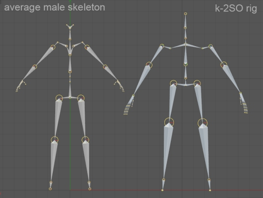 skeleton_compa